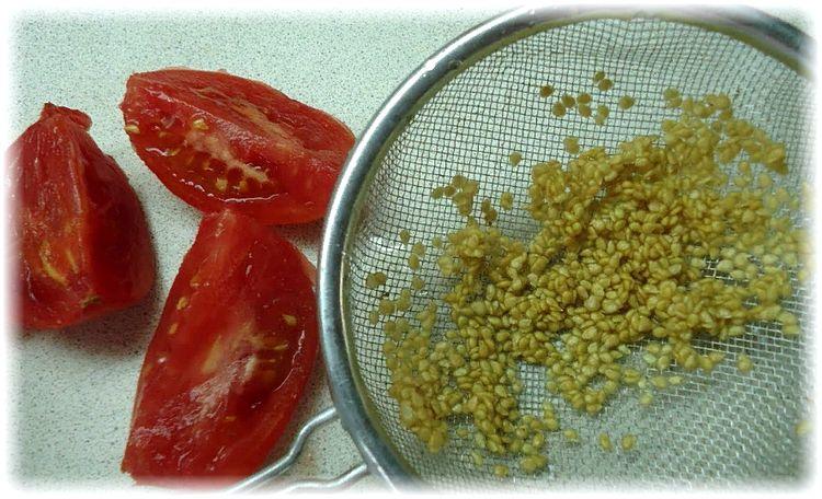 промывка семян томата