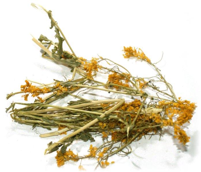 сухая трава сурепки