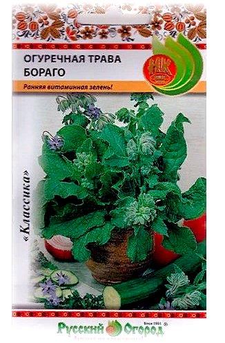 применение огуречной травы