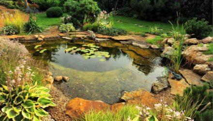 Водоем на даче — виды (пруд, ручей, фонтан), правильный уход за водоемом