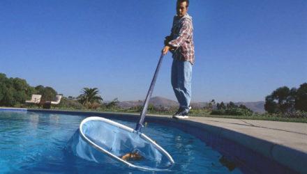 Правильный уход за бассейном на даче летом и зимой