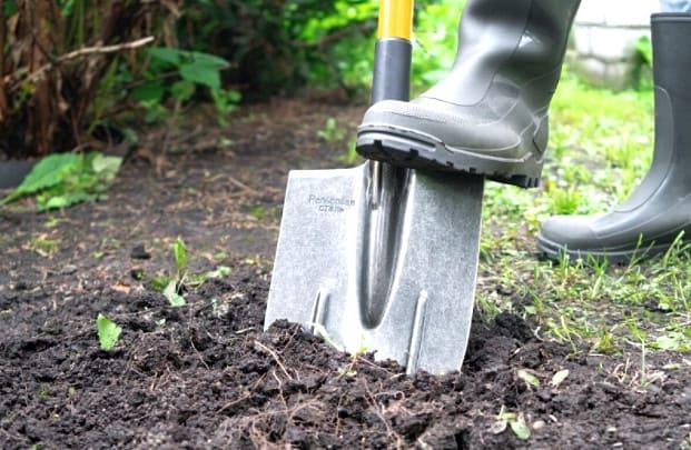 выбор лопаты штыковой для копки огорода